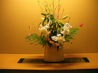 Aburaya_flower