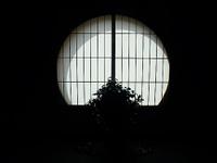 Aburaya_window